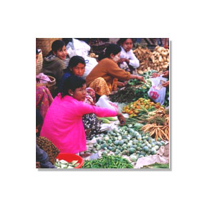 Food Security Index Dupont Food Security